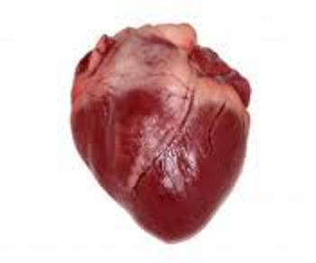 Pork Heart (per lb.) (Choose size to view pricing)