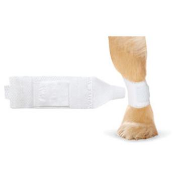 Pawflex Basic Bandage (Choose Size to View Price)