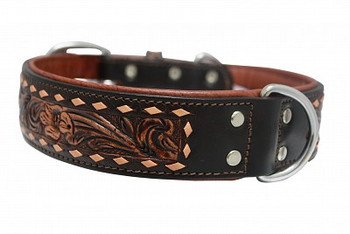 Angel Tucson Collar (Choose size to view price)