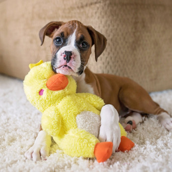 Zippy Paws Cheeky Chumz Duck