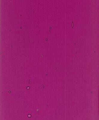 Sheet Glass Sample - 806 (Medium Dark Purple)