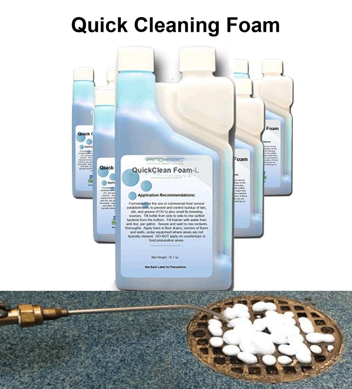 QuickClean Foam L (case of 6)