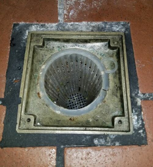 Restaurant drain solids protection