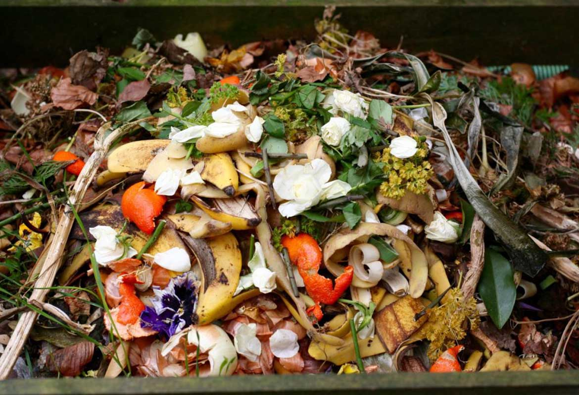 How the Food Waste Digester can reduce food waste