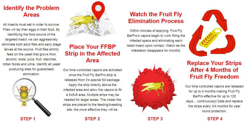 Fruit Fly Vapor Strip