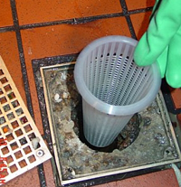 plastic floor drain strainer for restaurants