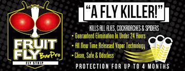 Fruit Fly Bar Pro eliminates infestations