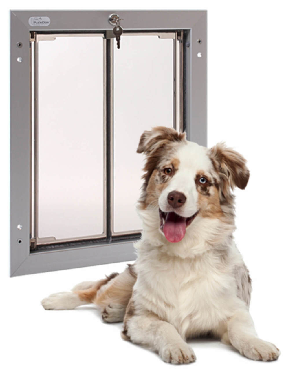 Plexidor large dog doors fit german shepherds, labradors, pointers, and other large breeds up to 90 pounds or so