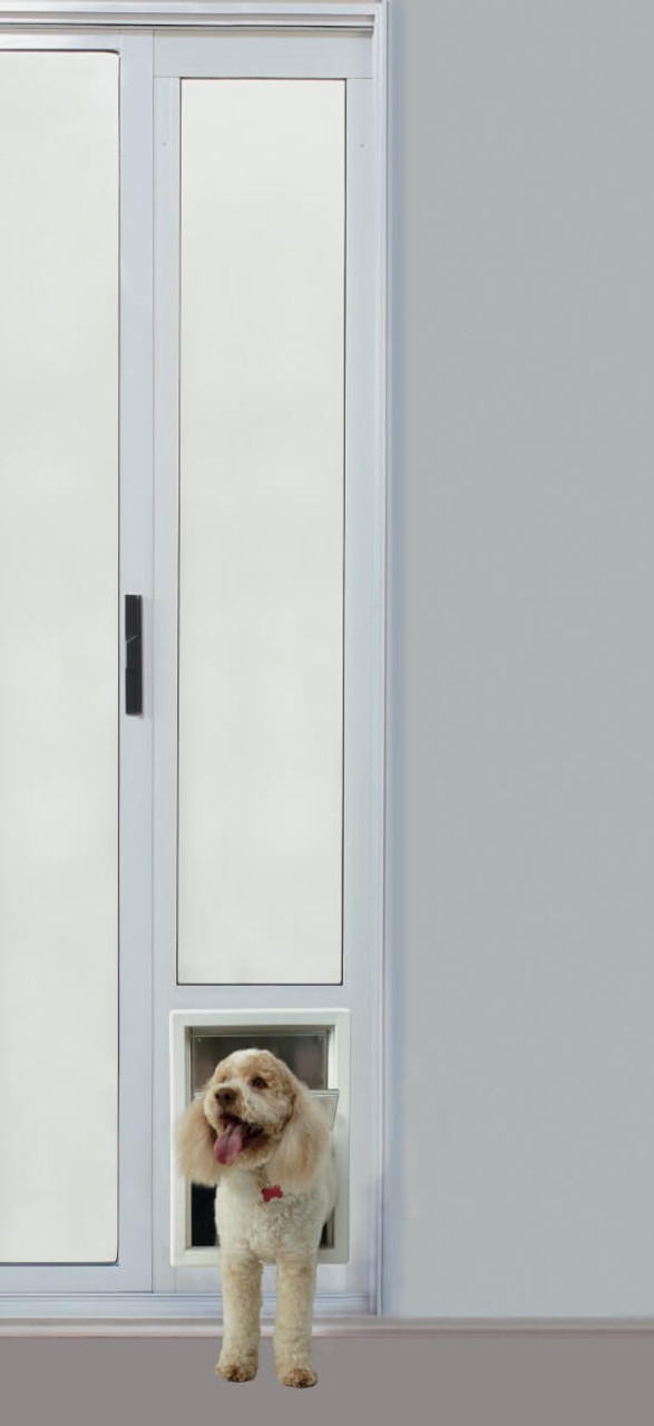 Ideal Fast Fit sliding glass pet doors are available in satin (brushed aluminum) and white