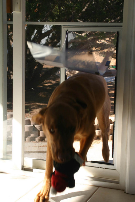 Hale Screen Dog Doors come with the stabilizer bar shown here in the tall large and larger sizes