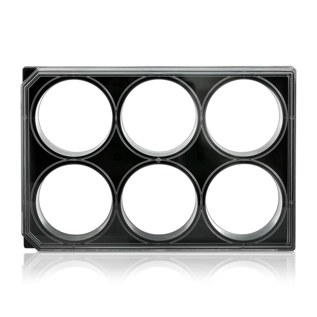 6 well glass bottom Plates