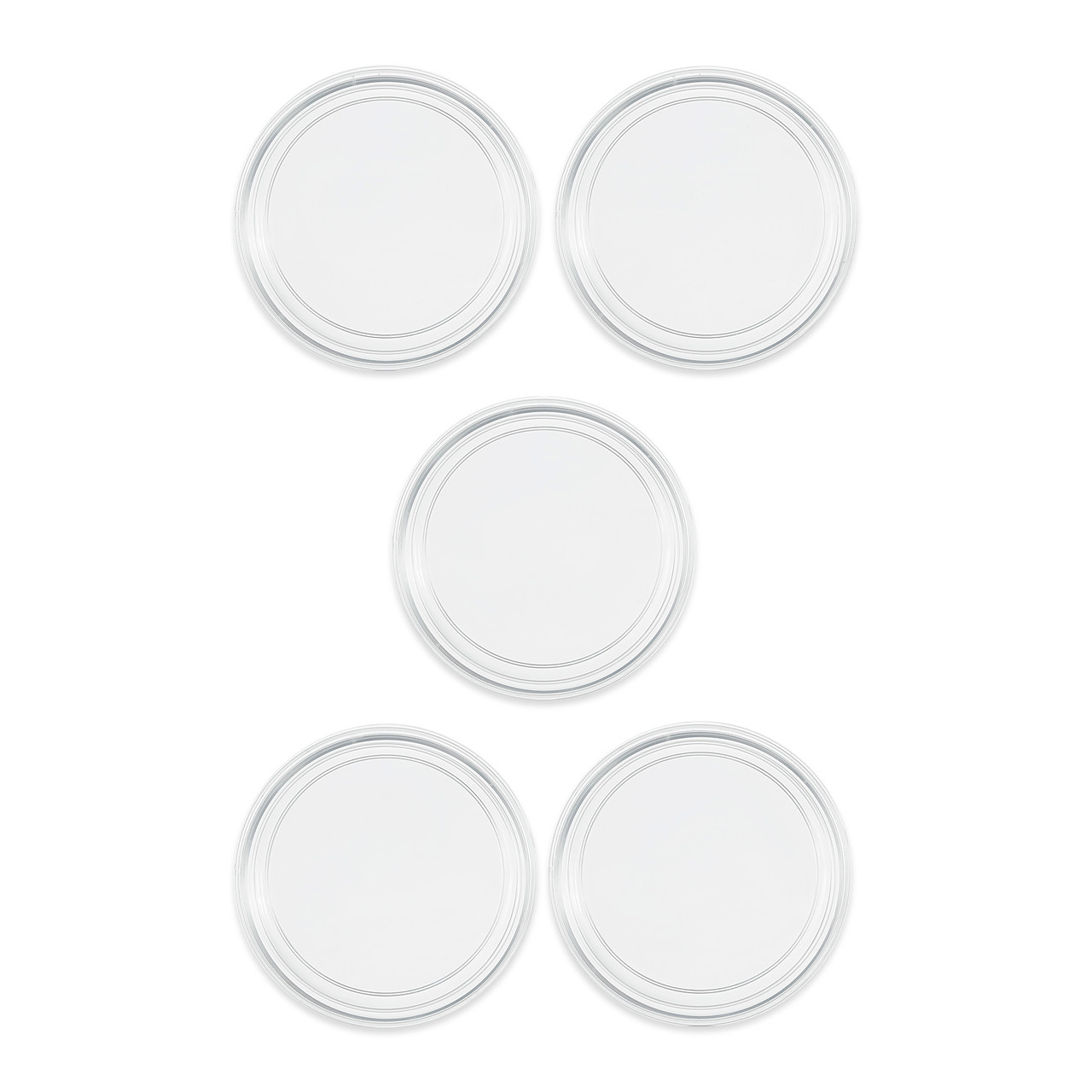 6cm petri dish