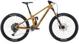 Transition Sentinel Carbon X01 (Loam Gold) 2021