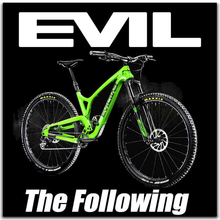 evil the following