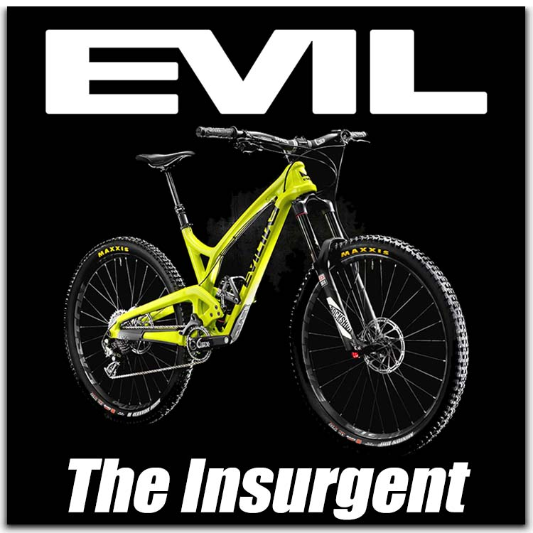 evil insurgent