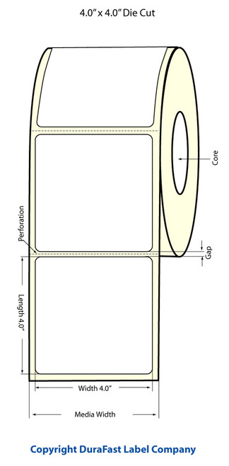 """LX900 4"""" x 4"""" Matte Paper Label 600/Roll (74975)"""