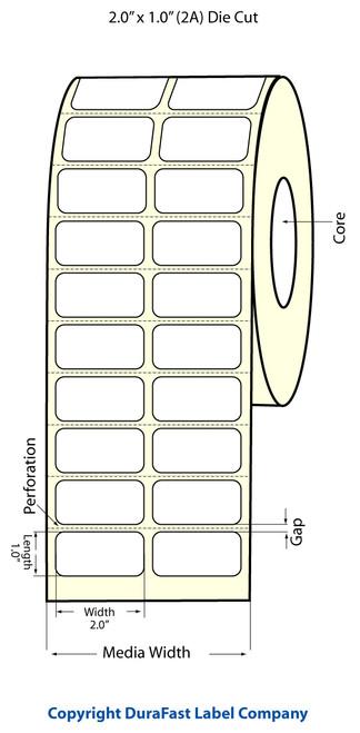 Epson TM-C3500 | ColorWorks C3500 2x1 High Gloss Label Roll | Epson Media | 811010