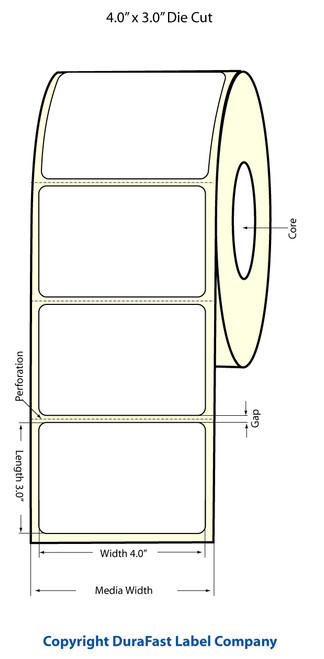 Epson TM-C3500 | ColorWorks C3500 4x3 High Gloss Label Roll | Epson Media | 811020