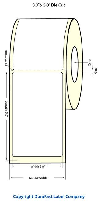 Epson TM-C3500 3x5 Matte BOPP Label Roll | Epson Media | 814016