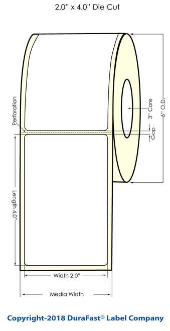 "TM-C3500 2"" x 4"" High Gloss Paper Label 290/Roll"