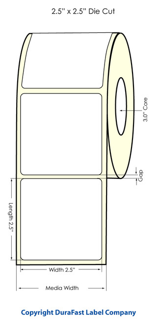 "Primera LX900 2.5"" x 2.5"" NP High Gloss Label Roll"