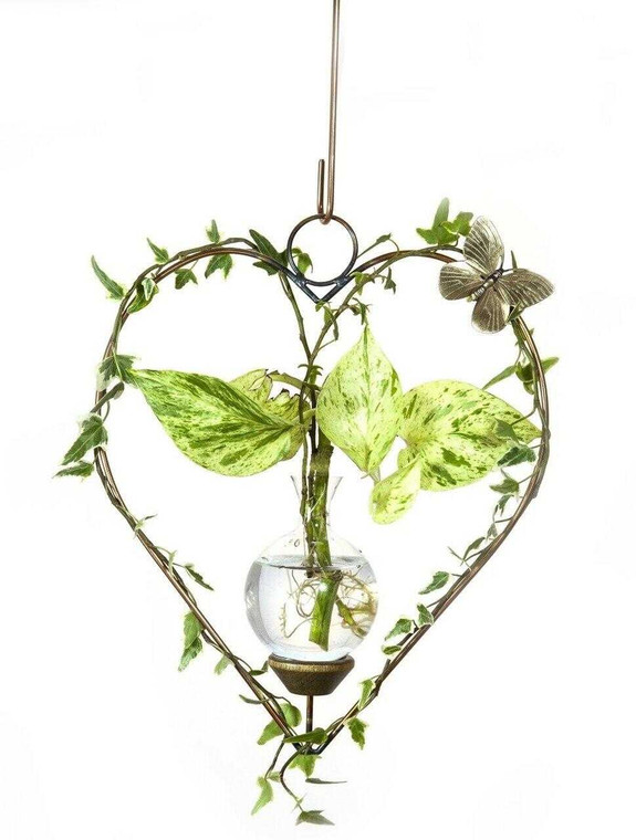 Heart Hanging Plant Rooter Vase with Plants