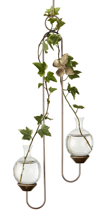 Double Hook Hanging Plant Rooter Vase with Plant