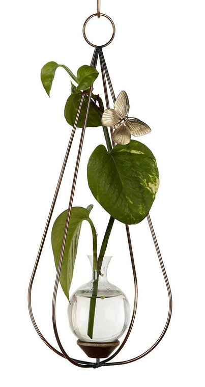 Dimensional Teardrop Hanging Plant Rooter Vase With Plant