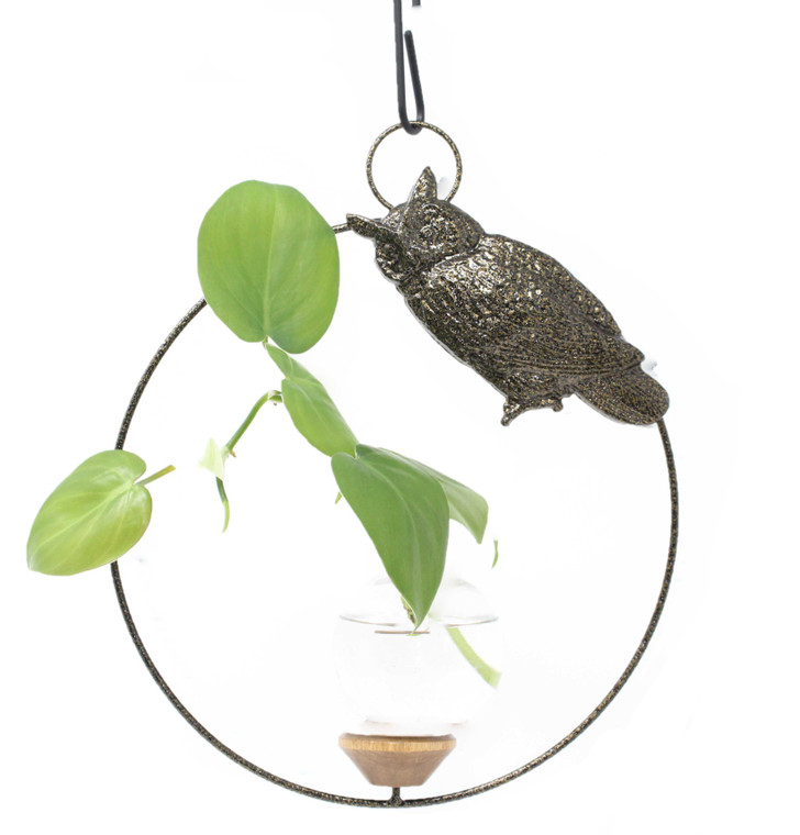 Owl Round Hanging Plant Rooter Vase With Plant