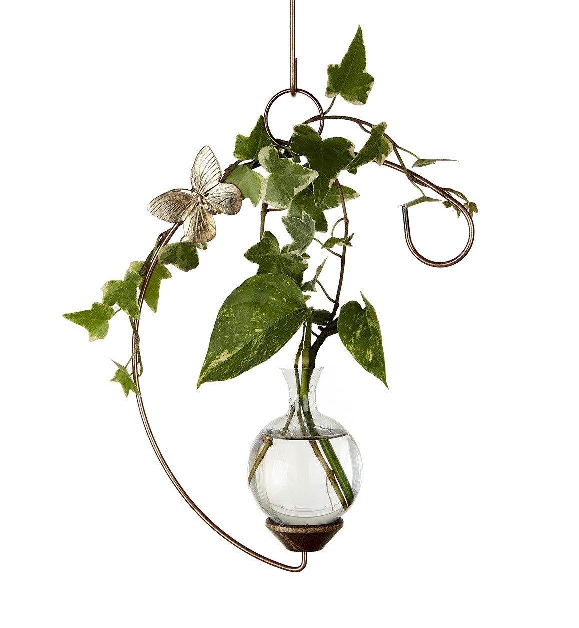 brass butterfly crescent hanging rooter vase with plant