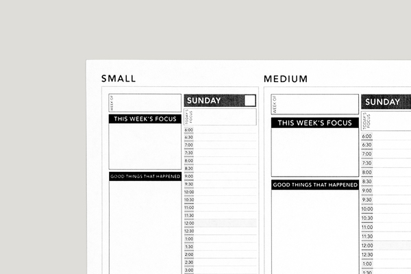 photo relating to Full Focus Planner Pdf called Down load Totally free Planners Equipment Pion Planner