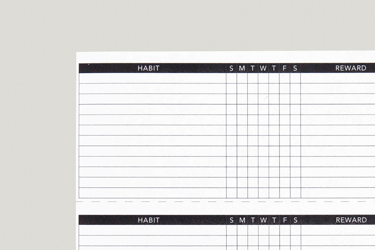 photograph relating to Daily Habit Tracker Printable titled Routine Tracker