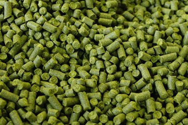 Tettnang (Germany) Hop Pellets 1 oz