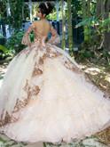 Vizcaya Quinceanera Dress 89255