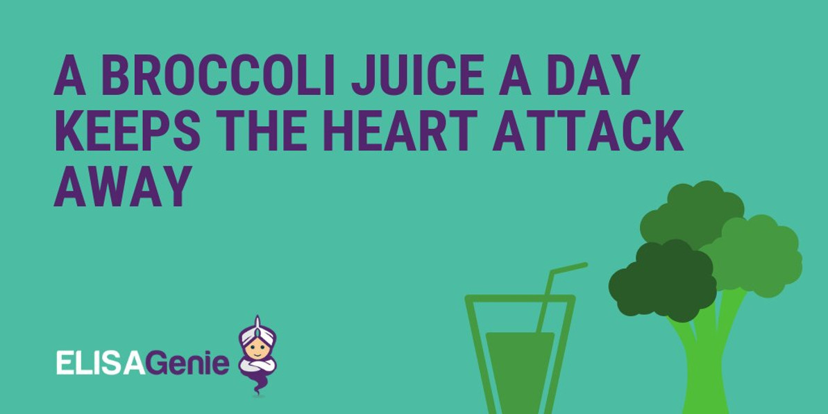 A broccoli juice a day keep the heart attack away