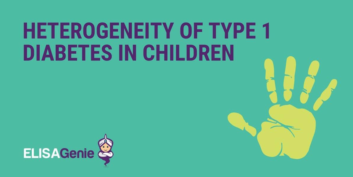 Heterogeneity of Type 1 diabetes in children