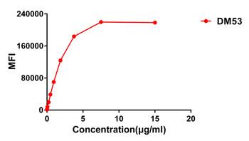 Anti-B7H3 antibody DM53 Rabbit mAb HDAB0043