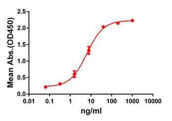 Anti-GPRC5D antibody DM61 Rabbit mAb HDAB0051