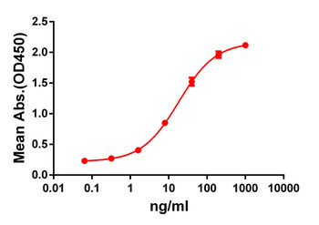 Anti-GPRC5D antibody DM62 Rabbit mAb HDAB0052