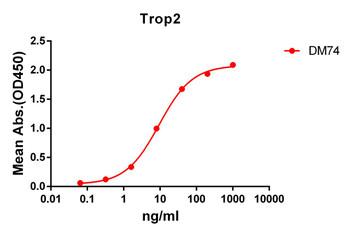 Anti-Trop2 antibody DM74 Rabbit mAb HDAB0061