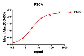 Anti-PSCA antibody DM87 Rabbit mAb HDAB0074