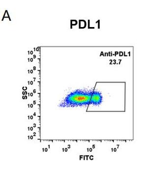 Anti-PDL1 atezolizumab biosimilar mAb HDBS0009
