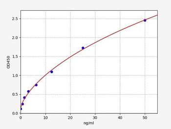 Bovine Signalling ELISA Kits Bovine SOD1 Superoxide dismutase Cu-Zn ELISA Kit BOFI00119