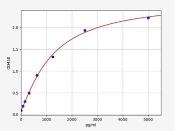 Rat Signaling ELISA Kits 5 Rat ATG13 autophagy protein 13 ELISA Kit RTFI01415