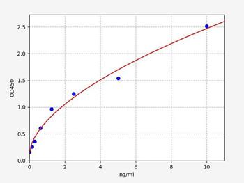 Rat Signaling ELISA Kits 5 Rat HSPA2 Heat shock-related 70 kDa protein 2 ELISA Kit RTFI01418