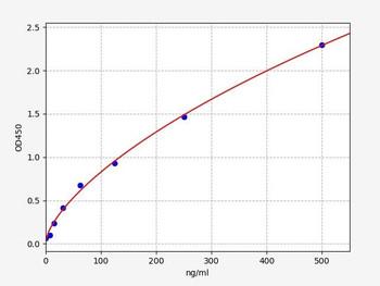 Rat Signaling ELISA Kits 5 Rat Alb Serum albumin ELISA Kit RTFI01486