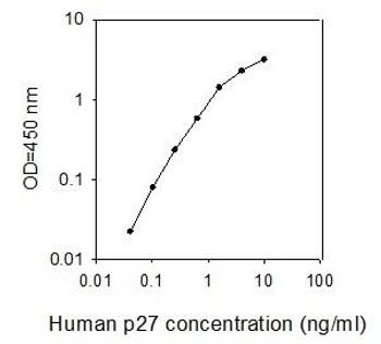 Human p27/Kip1/CDKN1B PharmaGenie ELISA Kit SBRS0961
