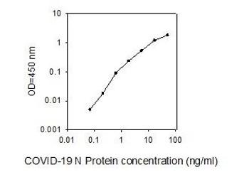 COVID-19 N-Protein PharmaGenie ELISA Kit SBRS1710