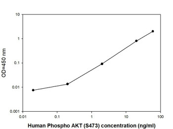Human Phospho-AKT S473 Quantitative PharmaGenie ELISA Kit SBRS1744