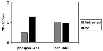 Human/Mouse/Rat Phospho-Jak1 Y1022 PharmaGenie ELISA Kit SBRS1867